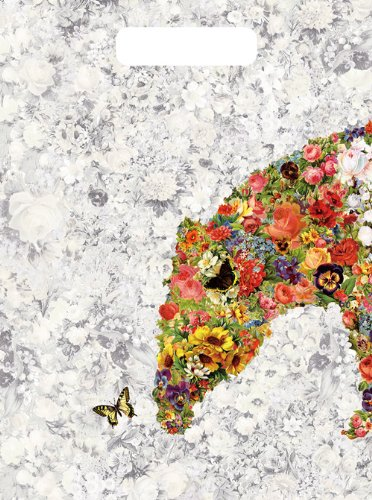 spark of FLOWER(完全生産限定盤) [DVD]