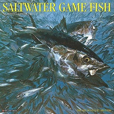 Saltwater Game Fish 2016 Calendar by Inc. Willow Creek Press (June 01,2015)