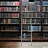 massiv Edelstahl Bibliotheksleiter Stufenleiter Bücher Regal Schrank Leiter 7 Sprossen