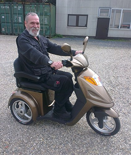 E-Scooter Senioren Dreirad David Bild 4*