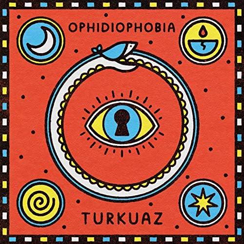 Turkuaz feat. Jerry Harrison & Adrian Belew