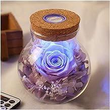 HANGQINGHENG LED Dimmer Lamp Light Flower Bottle Creative Romantic Rose Bulb Great Valentine's Day Night Light for Kids (C...