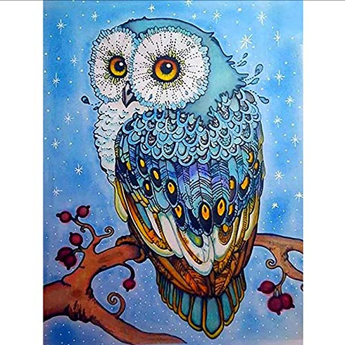 Cute Owl Diamond Painting Kits for Adults Beginner, 5D Diamond Art Cross Stitch Paint by Numbers, Full Drill DIY Diamond Embroidery Paintings Pictures Arts for Home Wall Decor Gift (16x12 in)