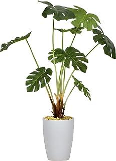 DORIS 観葉植物 光触媒 本物に近い質感 水やり不要 フェイクグリーン 陶器鉢 モンステラ