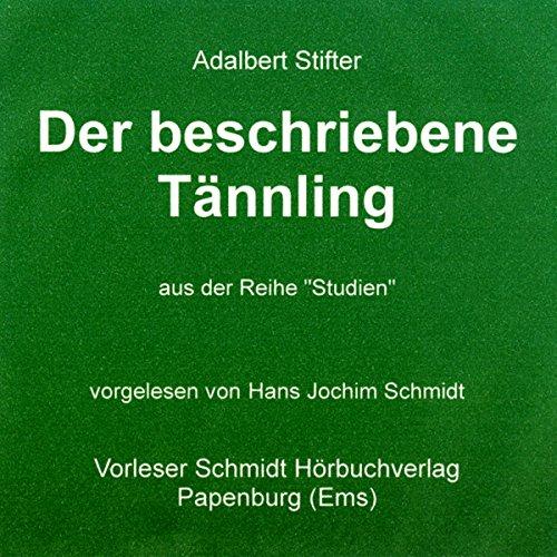 Der beschriebene Tännling audiobook cover art
