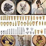 Takefuns Holz-Brenn-Spitzen Holz-Brenn-Werkzeug Schnitzeisen-Spitze Lötkolben Set Holzbrenner Werkzeug Gravierset Stift Kit Extra Tips 53 Stück