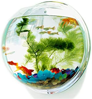 Yoah Wall-mounted Fish Tank Acrylic Betta Fish Tank Aquarium Wall Decoration Plant Fish Bubble Vase Home Decoration Jar (T...