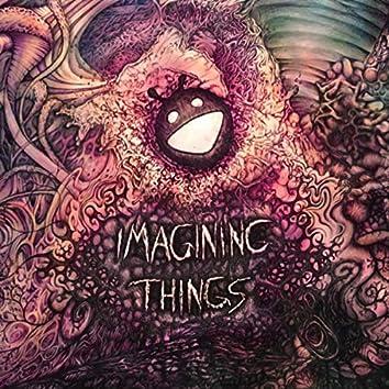 Imagining Things