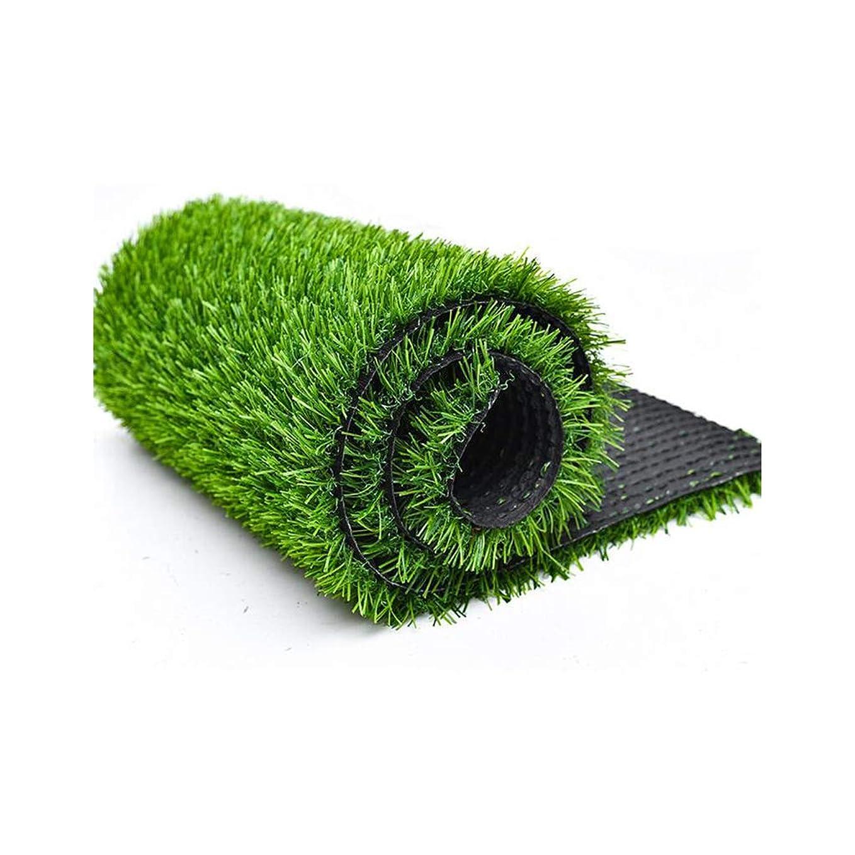 野菜ジョグトロピカルALYR 人工芝 じゅうたん、人工芝 グラスカーペット 芝犬マットパッドドレン穴付き ラバーバッキング 屋外ガーデンビュー用ヒゲ15ミリメートル,Green_6x39ft/2x13m