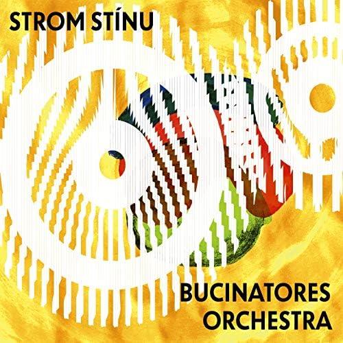 Strom stínu a Bucinatores orchestra