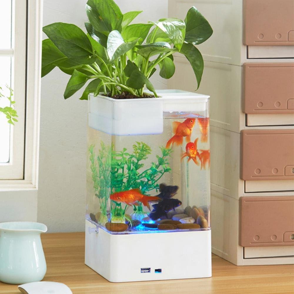 AOLVO Aquaponic Betta Fish Tank Mini Water Garden Aquarium Fish ...