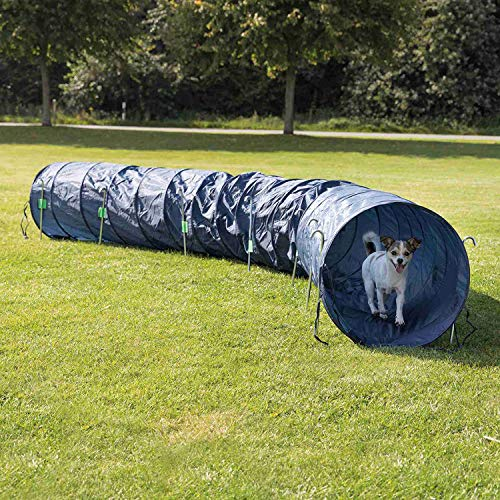 TRIXIE Pet Products Agility Basic Tunnel, Large, Blue, 196.75 x 23.5 x 23.5 in, Model: 3211