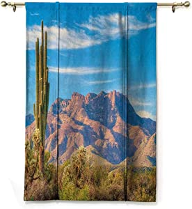 """GugeABC Farmhouse Curtains Cactus Balloon Shades Window Treatment Valance Landscape of Mountain Sun Desert Cactus Plant Botanic Bushes Sky with Clouds Image 35"""" Wide by 64"""" Long Multicolor"""
