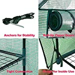 """Mini Walk-in Greenhouse Indoor Outdoor -2 Tier 8 Shelves- Portable Plant Gardening Greenhouse (57L x 57W x 77H Inches… 14 【Strong Construction】This mini walk-in greenhouse is built with high quality metal frame with powder coating, durable bearing net on each layer is strong enough to hold more seed trays, pots and plants growth. The clear waterproof PE cover protects plants from frost or pests while allowing nourishing sunlight to pass through. 【Indoor Outdoor Greenhouse】Waterproof and UV protection, ideal growing environment , can be used indoor and outdoor at all seasons. Perfect for protecting young plants or extending the plant growing season. 【Portable & Easy Setup】Overall Dimensions: 57""""L x 57""""W x 77""""H, Perfect Size for Easy Moving to Indoor or Outdoors. Easy to assemble, no tools required. Enjoying a lot of fun of the flowers and plants in your leisure time!"""