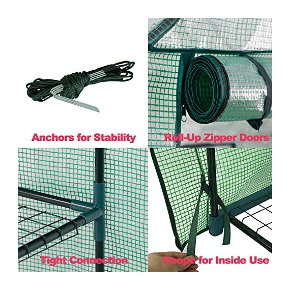 """Mini Walk-in Greenhouse Indoor Outdoor -2 Tier 8 Shelves- Portable Plant Gardening Greenhouse (57L x 57W x 77H Inches… 7 【Strong Construction】This mini walk-in greenhouse is built with high quality metal frame with powder coating, durable bearing net on each layer is strong enough to hold more seed trays, pots and plants growth. The clear waterproof PE cover protects plants from frost or pests while allowing nourishing sunlight to pass through. 【Indoor Outdoor Greenhouse】Waterproof and UV protection, ideal growing environment , can be used indoor and outdoor at all seasons. Perfect for protecting young plants or extending the plant growing season. 【Portable & Easy Setup】Overall Dimensions: 57""""L x 57""""W x 77""""H, Perfect Size for Easy Moving to Indoor or Outdoors. Easy to assemble, no tools required. Enjoying a lot of fun of the flowers and plants in your leisure time!"""