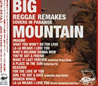 Reggae Remakes by Big Mountain (2003-07-02)