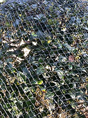 Commercial Grade Heavy Duty Polyethylene Anti Bird Netting for Garden Blueberries Fruit Trees Poultry Cage Pond Net Reusable Does not Tangle Snag or Rot (20 ft x 33 ft)