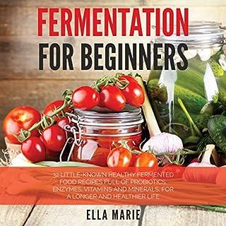 Fermentation for Beginners audiobook cover art