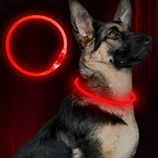 BSEEN LED Dog Collar, USB Rechargeable, Glowing Pet Dog Collar for Night Safety, Fashion Light up Collar for Small Medium Large dogs