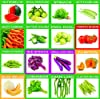 KRIWIN 51 Varieties 2215+ seeds(Organic/Hybrid) Fruits & Vegetables Seed with Start your own Garden Guide booklet #3