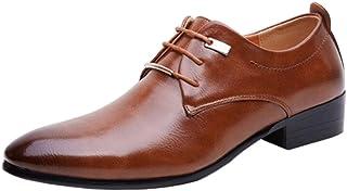 ALSYIQI Men's Classical Fashion Casual Oxford Business Shoes Dress Shoes AL8871