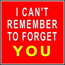 I Can't Remember to Forget You [Explicit]