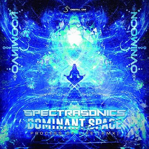 Ovnimoon, Dominant Space & Spectra Sonics