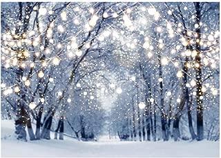 Best winter wonderland sweet 16 party invitations Reviews