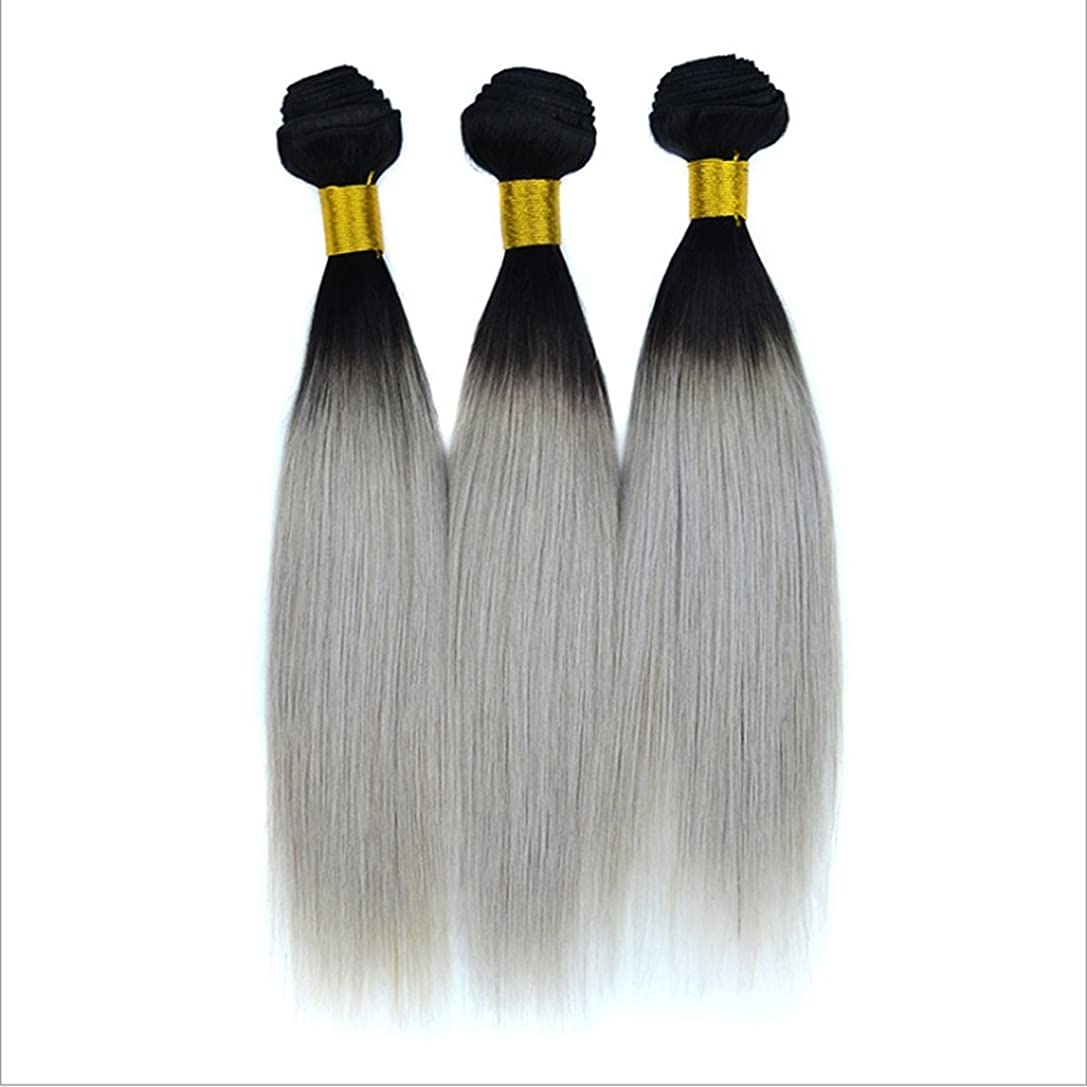 寄付踊り子口実バージンリアルストレート人間の毛のカーテンブラジルの女性のためのヘアエクステンションナチュラルブラックグラデーションシルバーグレーヘアピンストレートヘア100g(10inch?18inch) (サイズ : 12 inches)