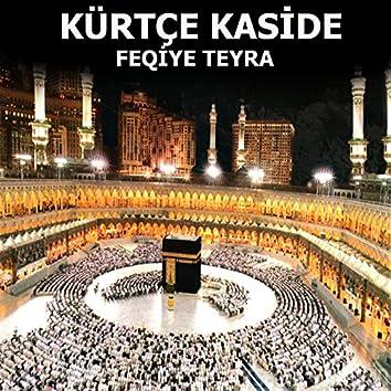 Kürtçe Kaside