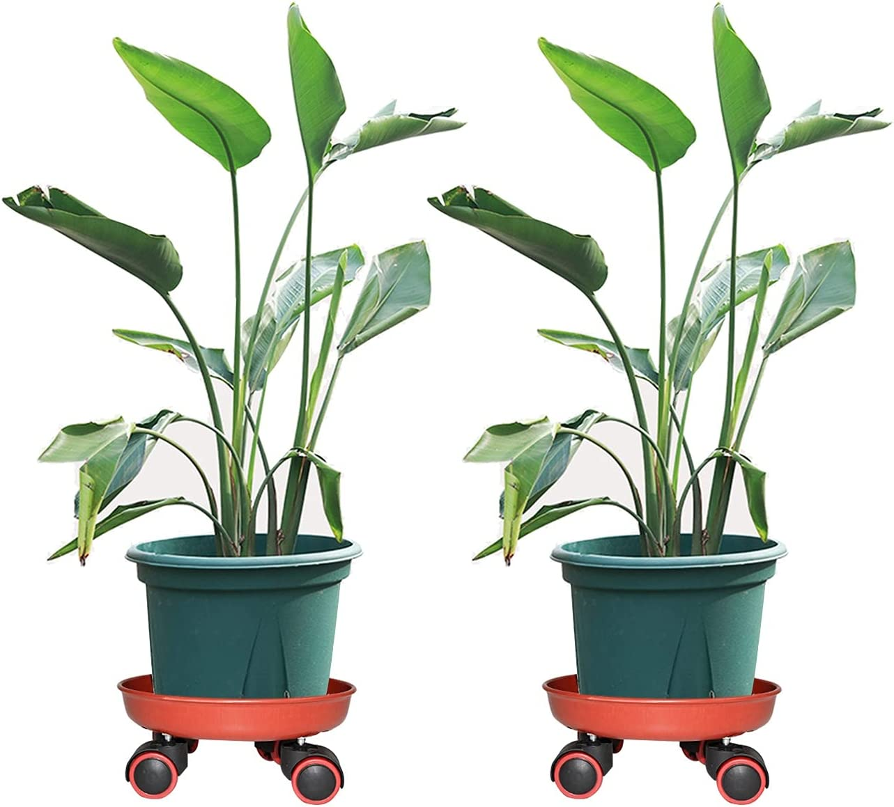 Hymj 2 Pcs Ultra-Cheap Deals Plant Caddy on Wheels Palle Stand Resin Max 74% OFF