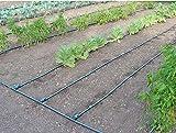 Zoom IMG-2 kit irrigazione orto ala gocciolante