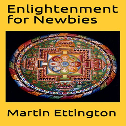 Enlightenment for Newbies audiobook cover art