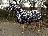 Hafer24 Ekzemerdecke Madrid Zebra Fliegendecke mit Halsteil und Gesichtsmaske Gr.95-175 (95)