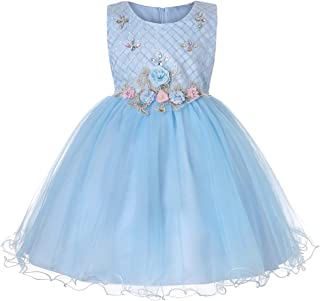 FYMNSI Flower Girls Bridesmaid Wedding Tulle Dress Embroidered Sleeveless Birthday Christening Party Ball Gown 0-14T