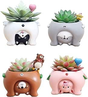 Youfui Ceramic Animal Flowerpot Succulent Plants Container Desk Mini Ornaments (4pcs See The World)