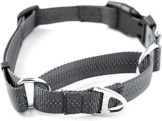 Best martingale clip collar Reviews