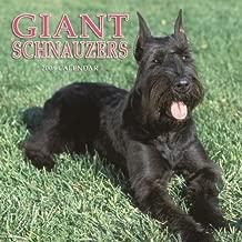 Schnauzers, Giant 2006 Calendar