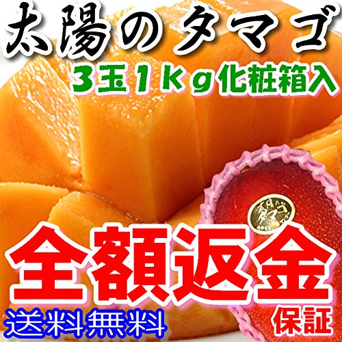 全額返金保証 マンゴー 太陽のタマゴ 宮崎マンゴー 宮崎 2L 3玉 約1kg 化粧箱入 太陽のたまご ギフト
