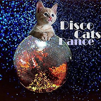 Disco Cats Dance