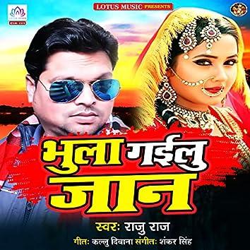 Bhula Gayilu Jaan