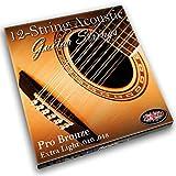 Adagio Pro, Corde per chitarra acustica a 12 corde, 12 corde - in bronzo 80/20 (calibro extra leggero .010 - .047, set con pallino all'estremità)