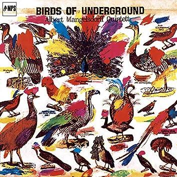 Birds of Underground