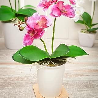 Fiore Purple Orchid in Porcelain Pot, 5 Blooms - Mini - Faux Plants - 14