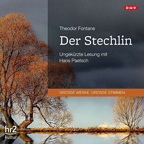 Der Stechlin audiobook cover art