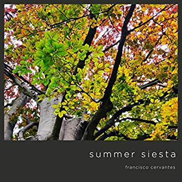 Summer Siesta