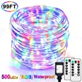 99Ft LED Rope Lights Outdoor, Multicolor Fairy String Lights Plug in with 500 LEDs, Waterproof, Super Durable, Dimmable and 8 Modes with Remote, for Bedroom Patio Wedding Christmas Decor (RGB)
