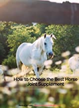 How to Choose the Best Horse Joint Supplement: An Equestrian Boots And Bridles E Book