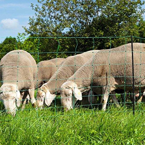 KERBL Ovinet Filet 1 Pointe pour Élevage Mouton Vert 50 m x 108 cm