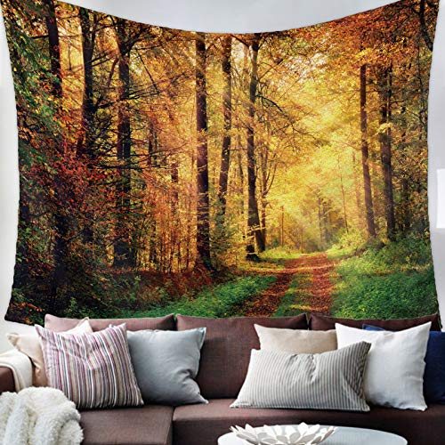 """Savannan Wall Tapestry - Sunrise in The Forest Woods Leaves Sunshine Tapestry Wall Hanging Wall Art Home Decor for Bedroom, Living Room, Dorm, 59""""X90"""""""